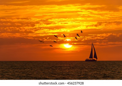 Sailboat sunset fantasy is a vessel sailing with full sails open silhouetted against a colorful orange sunset sky and large seabirds flying overhead.