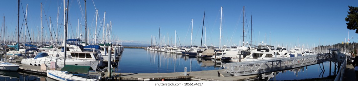 Sailboats in marina with Olympic Mountains in background, Seattle, Washington