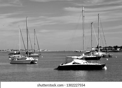 Sailboats moored on the river Florida, USA