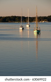 Sailboats on the Chester River
