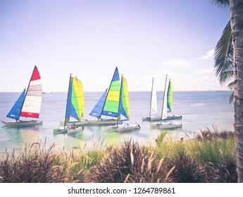 Sailboats on a Sunny Say