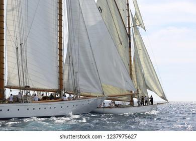 sailing boat race