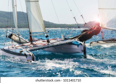 Sailing boat race, catamaran in regatta