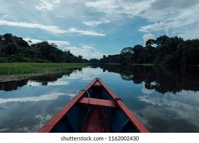 sailing a boat through a flooded forest in Latin America
