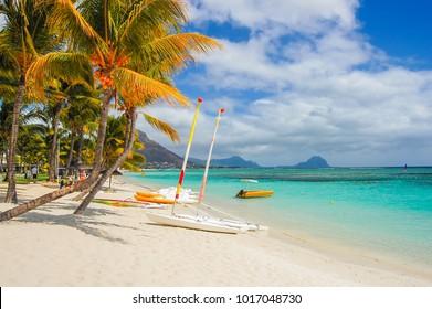 Sailing boats on beautiful beach with palm trees, Mauritius Island
