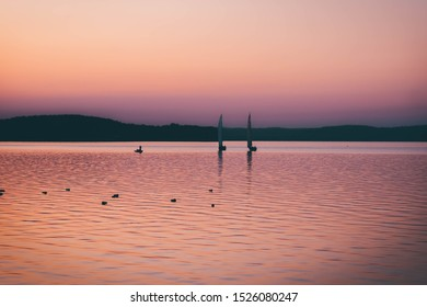 Sailing boats at sunset on background. many wild ducks swimming in water. silhouette of fishermen in a boat on a lake.