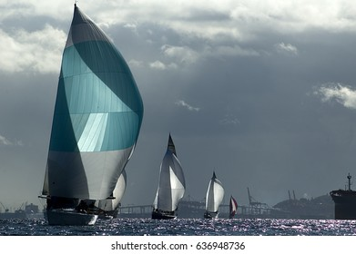 Sailing Races in the Pacific Northwest USA