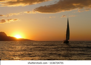 sailing regatta at sunset