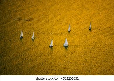sailing school course in a golden sea
