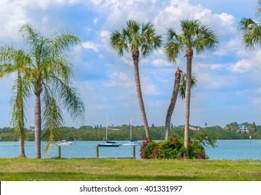 Sailing in Southwest Florida on tranquil waters surrounded by tropical palms and flowering bushes.
