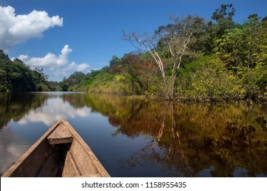 Sailing in a wooden boat through the flooded forest in Leticia, Amazonas region, Colombia.