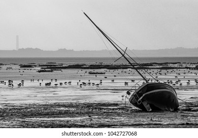 Sailing Yacht on side at Low Tide with grazing birds silhouetted against low light