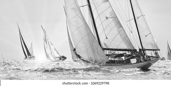 Sailing yachts classic regatta. Yachting. Sailing. Race