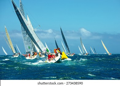 Sailing yachts regatta. Series yachts and ships