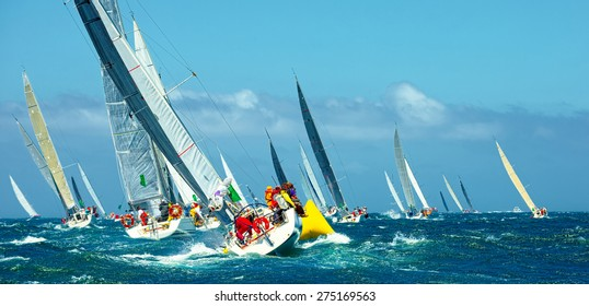 Sailing yachts regatta. Series yachts and ships