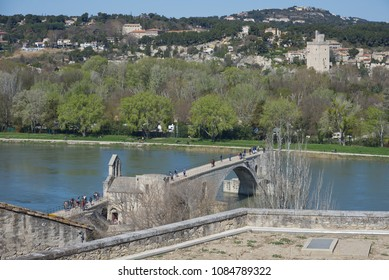 Saint Benezet bridge and Fort Saint Andrè - Avignon - Camargue - France