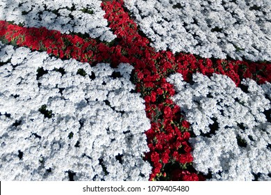 saint george flag red cross on white made of flowers detail