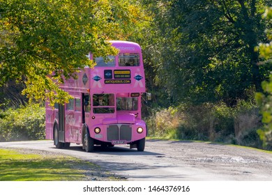 Saint John, NB, Canada - September 29, 2018: A pink double decker tour bus of a city tour. These buses offer tours of the city, mainly to cruise ship passengers. The bus is on a road lined by trees.