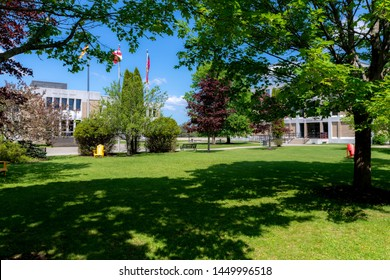 Saint John, New Brunswick, Canada - June 23, 2019: Trees and the shady lawn at the University of New Brunswick, Saint John campus. Campus buildings in the background are partially obscured by trees.