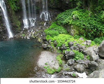 Saint Joseph / La Reunion: Lush vegetation on the bank of the pool of the Grand Galet Falls at the Langevin river
