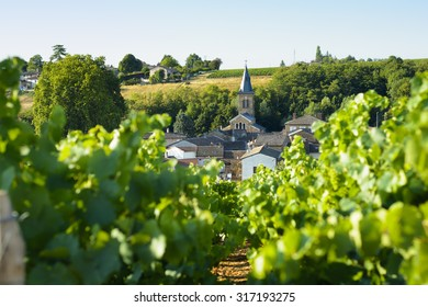 Saint Julien village and raod in Beaujolais land, France