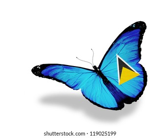Saint Lucia flag butterfly flying, isolated on white background