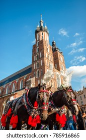 Saint Mary's Church and carriage powered by decorated horses in Krakow, Poland