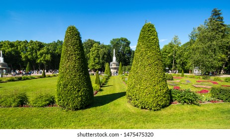 SAINT- PETERSBURG, RUSSIA - JULY 10, 2017: The Roman fountain in the garden of Lower Park in Peterhof, Saint Petersburg, Russia. The park ensemble of Peterhof belongs to the world heritage of UNESCO