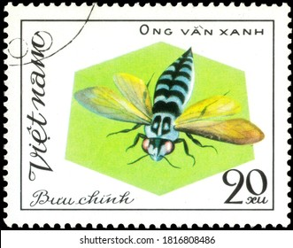 Saint Petersburg, Russia - May 31, 2020: Postage stamp issued in the Vietnam with the image of the Ong Van Xanh, Bee. From the series on Bees and Wasps, circa 1982