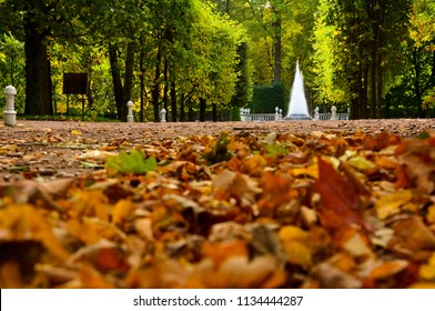 Saint Petersburg / Russia — October 4, 2015: autumn yellow and orange leaves on the alley and the Pyramid fountain in the Lower Park of Peterhof (Petergof), Saint Petersburg, Russia