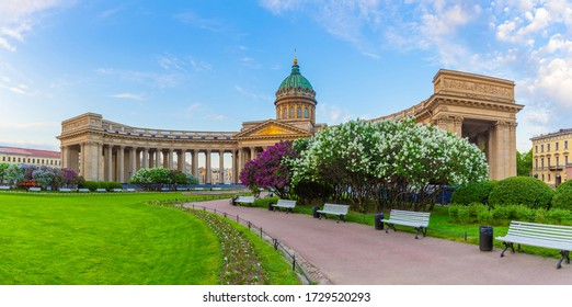Saint Petersburg. Russia. Panorama of St. Petersburg during the lilac bloom. Kazan Cathedral against the blue sky. View from Nevsky Prospekt to Kazan Cathedral. Lilac blooms on Kazan square.