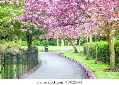 Saint Stephen's Green park, Dublin