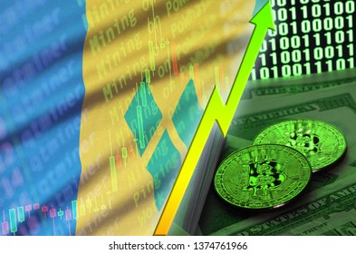 Saint Vincent and the Grenadines flag and cryptocurrency growing trend with two bitcoins on dollar bills and binary code display