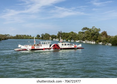 SAINTE MARIES DE LA MER, FRANCE - AUG 15, 2017: people enjoy traveling in the river rhone delta in the camargue, using a car and horse ferry. Wild animals live in that area.