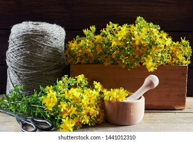 Saint-John's-wort herb cut fresh in the field nearby a  wooden box with medicinal material, a mortar with pounder, antique scissors and linen threads on wooden backgroun, closeup, copy space