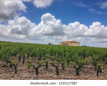 Saint-Julien-Beychevelle, Aquitaine / France - May 23 2014: View of a chateau and vineyard in Saint Julien in the Medoc