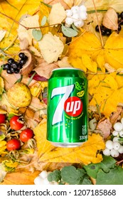 Saint-Petersburg, Russia, 17102018 Drink 7Up in a glass tin bottle on autumn yellow green foliage of trees, spruce, cones, chestnuts, berries, wild rose, birch, linden, white with a drop of dew, rain