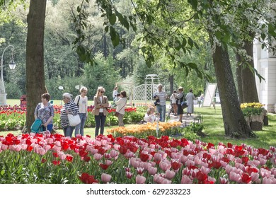 SAINT-PETERSBURG, RUSSIA - MAY 16, 2016: People admire tulips at the Tulip Festival on Elagin island in Saint-Petersburg
