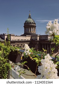 Saint-Petersburg, Russia, May 2018: Famous Kazan Cathedral and white lilac bushes. Sunny spring day in the city. Tourism and travel content for instagram. Editorial use only.