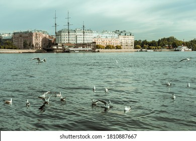 サンペテルブルク。 ロシア。 ストレルカ・ヴァシリエフスキー島のシティのパノラマと景色。
