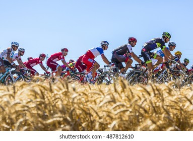 SAINT-QUENTIN-FALLAVIER,FRANCE - JUL 16:The French National Champion, Arthur Vichot of FDJ Team riding in the peloton in a wheat plain during the stage 14 of Tour de France 2016.