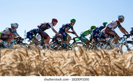 Saint-Quentin-Fallavier,France - July 16, 2016: The peloton riding in a wheat plain during the stage 14 of Tour de France 2016.