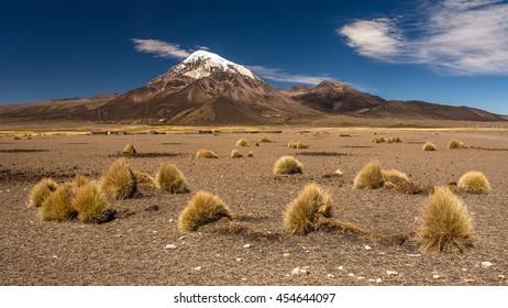 Sajama volcano (6542 m), highest peak of Bolivia