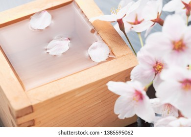 Sake liquor and cherry petals