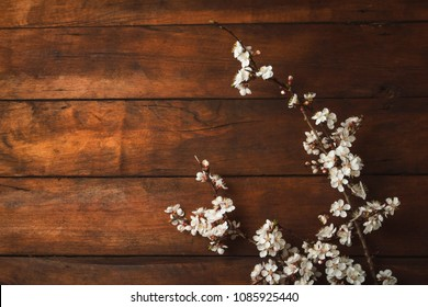 Sakura branches with flowers on a dark wooden background. Flat lay, top view.