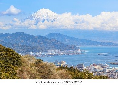 Sakura cherry blossom with mount Fuji landscape at Shizuoka prefecture, Japan