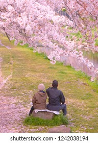 Sakura and elderly couple