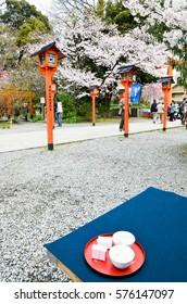 Sakura-cha, Tea of Cherry blossoms, in Hirano Jinja Shrine, Kyoto, Japan