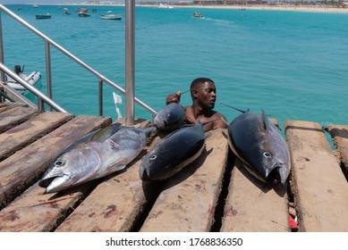 SAL ISLAND, CAPE VERDE - 04-28-2019: tuna fish lying down on the wooden pier of Santa Maria in Sal island, Cape Verde