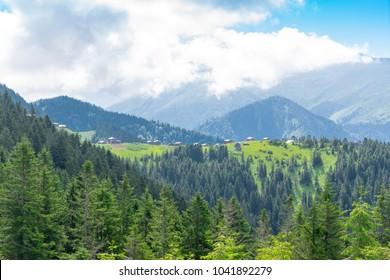 Sal Plateau Rize Camlihemsin Turkey
